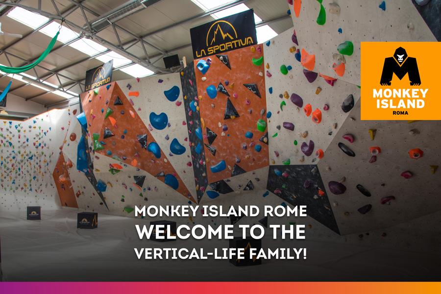 Vertical-Life Climbing